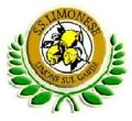 logo Limonese