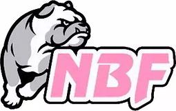 logo Nico Basket