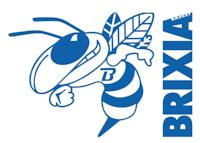 logo Rmb Brixia