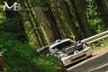 zumellese2009 4
