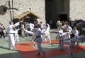 esibizione judo